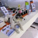 Erfolg auf der Hundemesse in Mainz