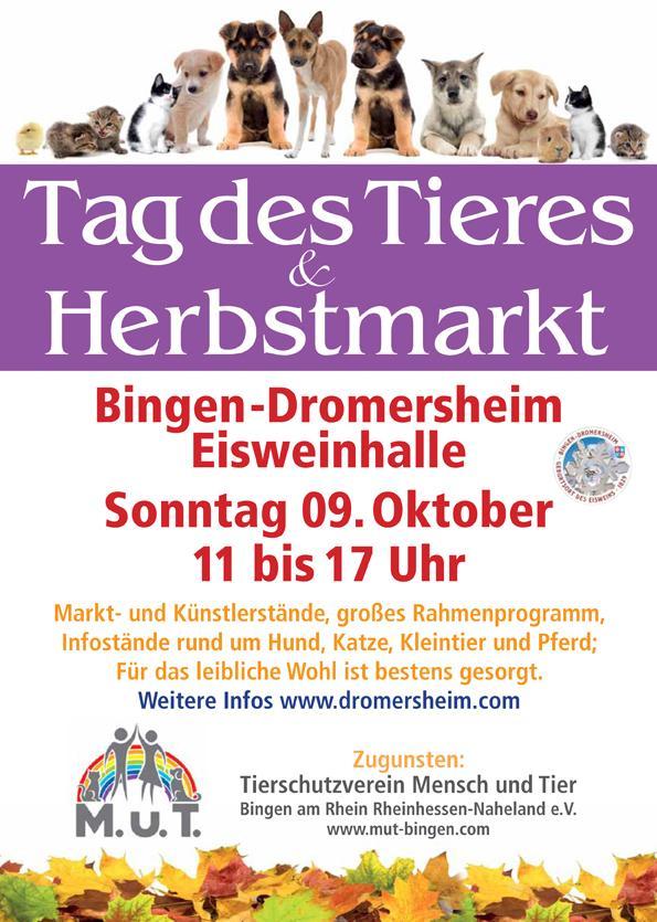 Tag des Tieres & Herbstmarkt 2016