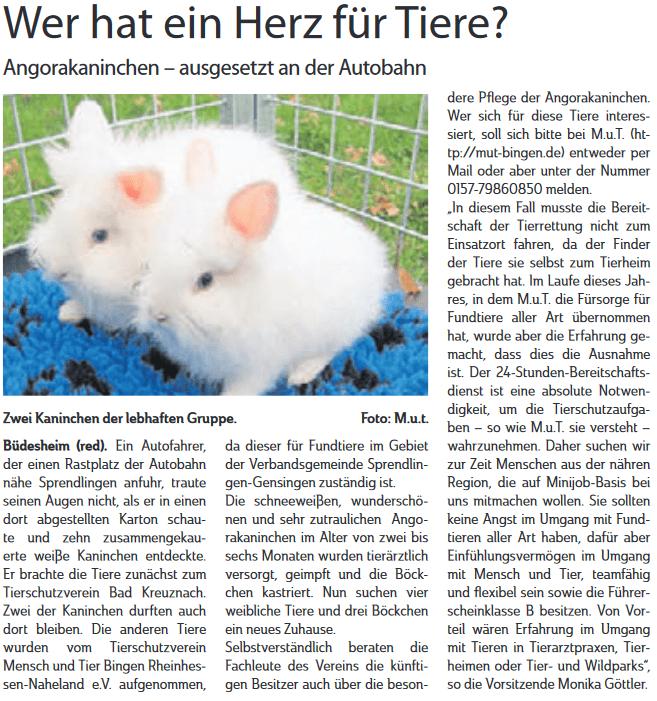 Bericht aus der Neuen Binger Zeitung