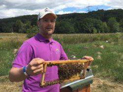 Faszination Bienenhaltung – ein Hobby für die ganze Familie