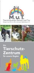 als PDF-Download