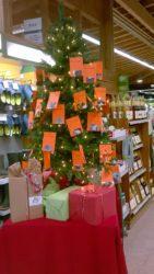 Große Weihnachtsaktion bei Dehner Bad Kreuznach